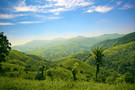 Costa Rica - San jose, Autotour Costa Rica en famille  - clé en main