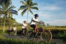 Bali - Denpasar, Combiné circuit et hôtel Bali zen et aventure         3*
