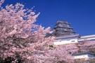 Japon - Osaka, Circuit Japon Autrement         3*