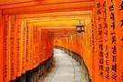 Japon - Tokyo, Circuit Des Capitales du Soleil Levant au Mont Fuji         4*