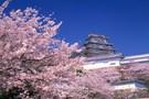 Japon - Tokyo, Circuit Japon Passé & Présent