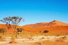 Namibie - Windhoek, Circuit Premiers Regards Namibie