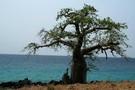 Sao Tome - Sao Tome, Circuit Nature Les chemins des Roças
