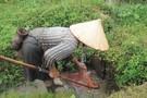Découvrez votre Circuit Vietnam en Liberté en privatif