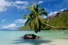 Seychelles - Mahe, Combiné hôtels 3 îles : Seychelles Découverte   -  MAHÉ, PRASLIN, LA DIGUE        3*