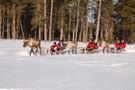 Finlande - Ivalo, Hôtel Bennett Arctic Club Ivalo         3*