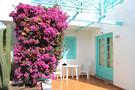 Découvrez votre Hôtel Labranda Tahona Garden 2*