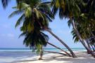 Guadeloupe - Pointe A Pitre, Combiné hôtels Basse-Terre en toute liberté à l'h  ...          3*