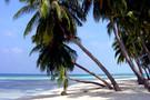 Guadeloupe - Pointe A Pitre, Combiné hôtels Combiné Guadeloupe : Basse-Terre a  ...          3*