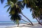 Guadeloupe - Pointe A Pitre, Hôtel Karaïbes         2*
