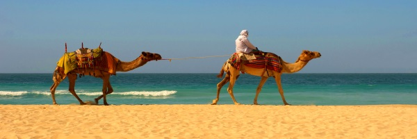 Autres - Le Grand Hotel 3* Djerba Tunisie