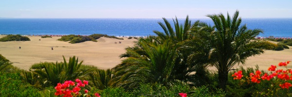 Chambre - Ifa Continental 3* Las Palmas Grande Canarie